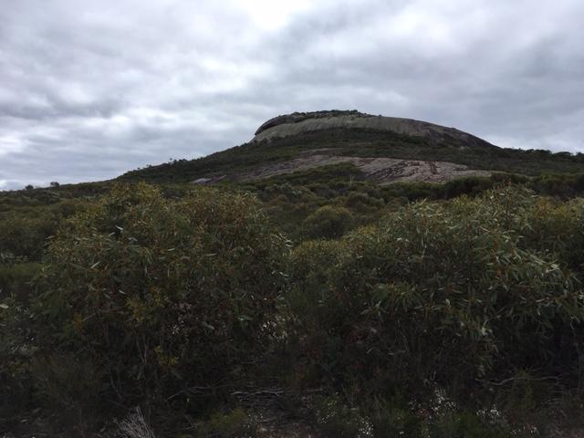 New Location – MtNey