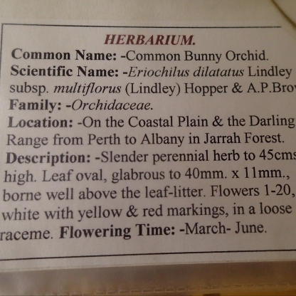 Found in the specimen display for April in the Forest Heritage Centre