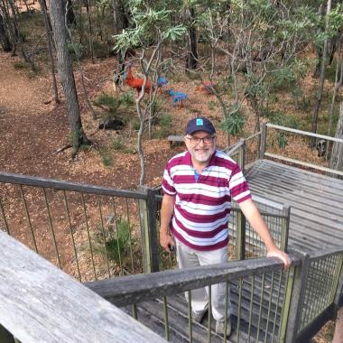 Tree top walk with emus down below
