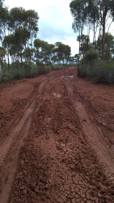 Hard mud but slippery