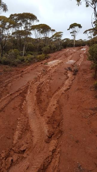 Sticky, slippery mud