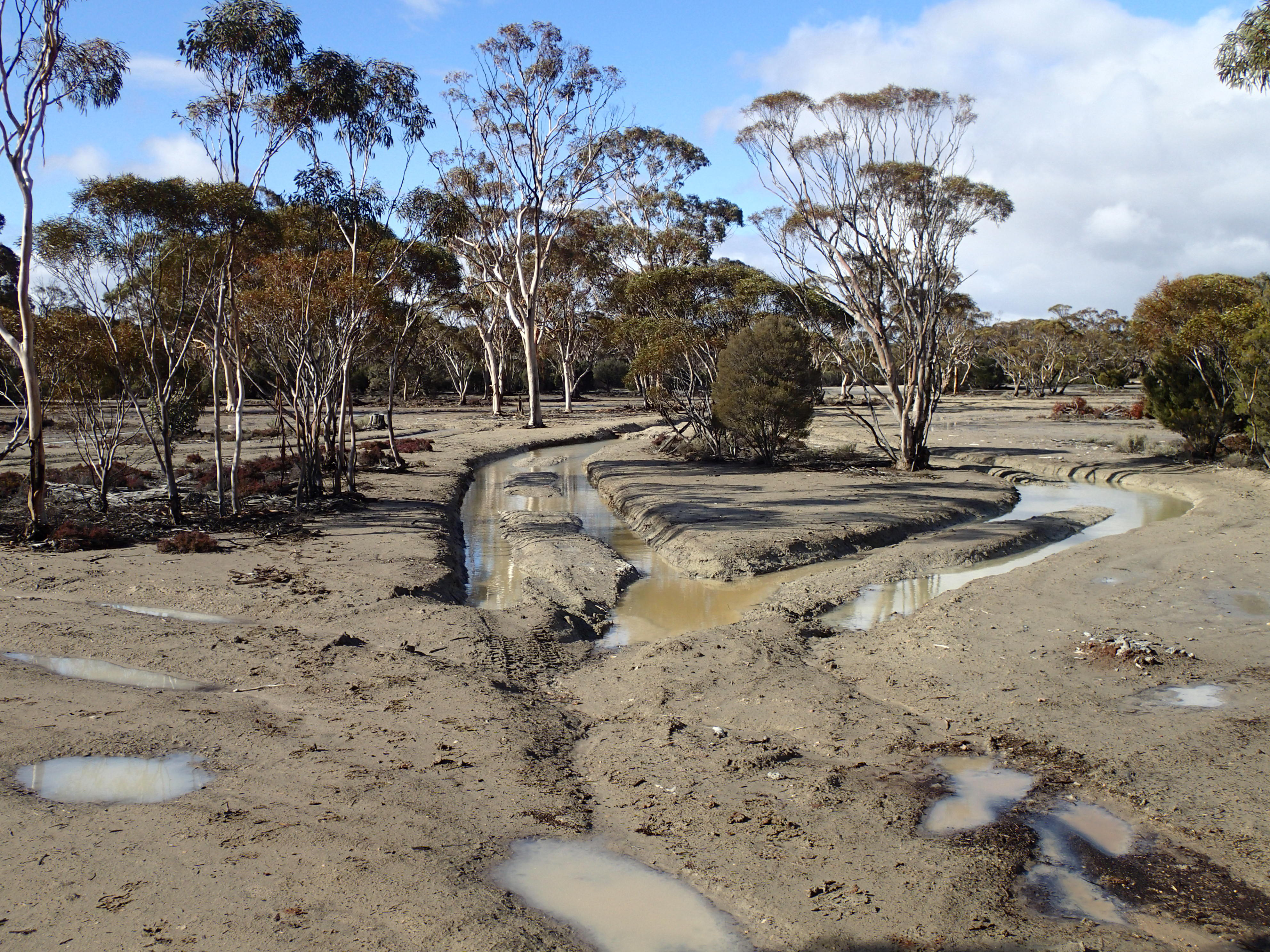 Bogged out clay flats