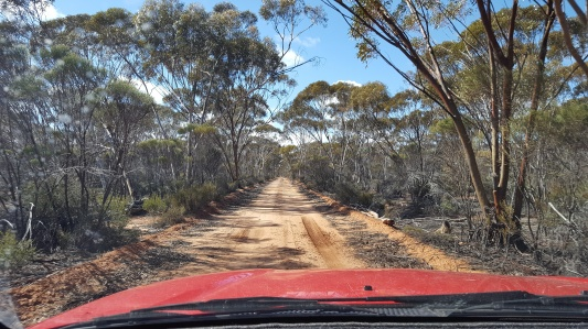 Track from Cave hill to Hwy