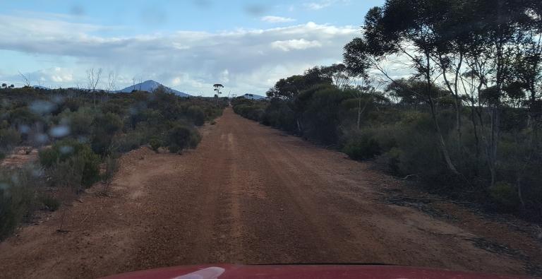 Track into Peak charles National Park