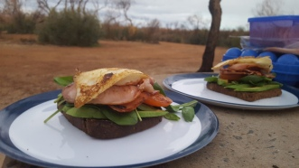 Egg, bacon, tomato, avocado, spinach on Rye